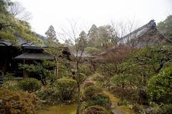6079   japanese temple gardens