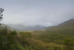 5881   mount wedge wilderness