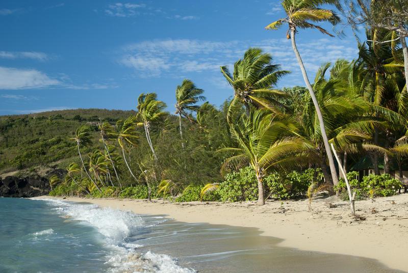 Deserted Tropical Island: Free Stock Photo 6339 Tropical Paradise Beach
