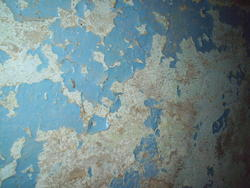 6582   peeling paint