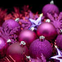 6825   Purple Christmas celebration