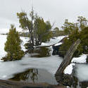 5862   frozen ponds