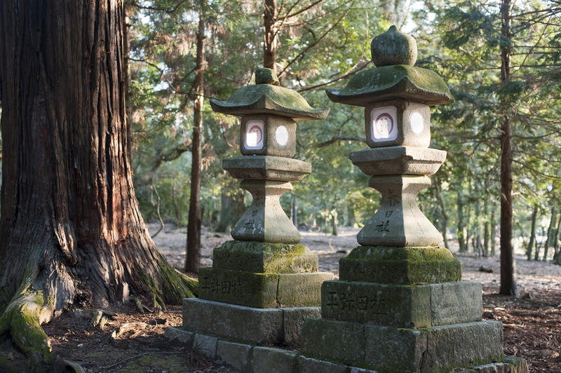 Tachi-doro (stone lanterns) located near the Kasuga Taisha Shrine complex, nara, japan