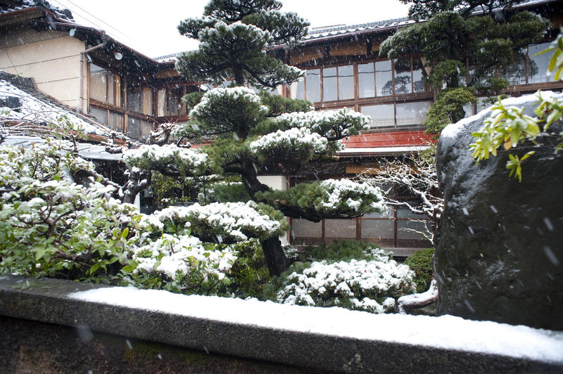 winter snow falling on a traditional japanese garden
