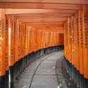 6140   red torii gates