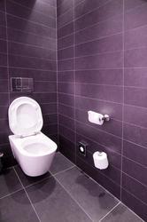 6917   Modern tiled water closet