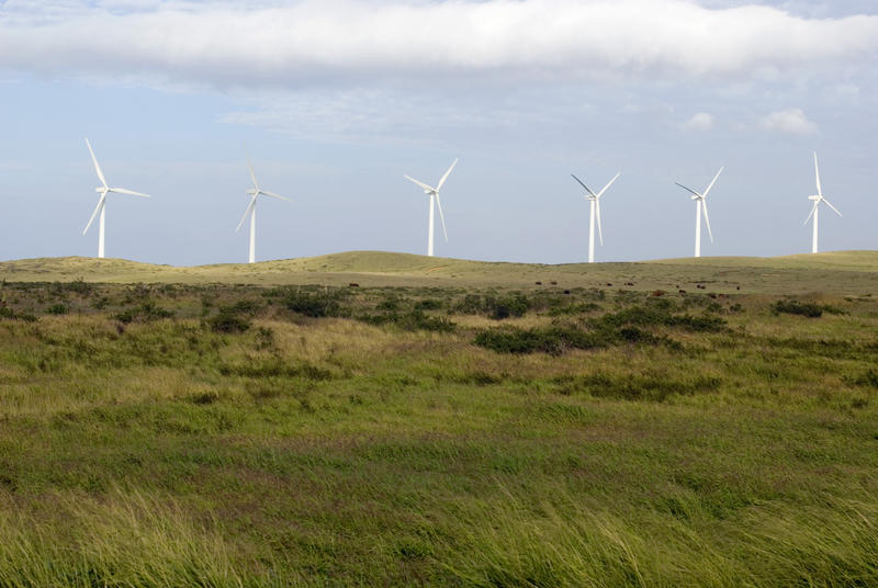a line of wind turbines on a windy hillside