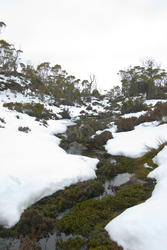 5824   winter stream