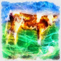 8981   abstract cow