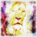 8984   abstract lion002
