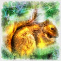 8991   abstract squirrel