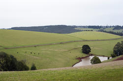 10942   Arable green hillside