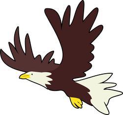 8955   bald eagle