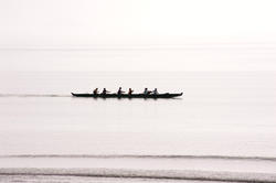 10981   Team of rowers in a canoe