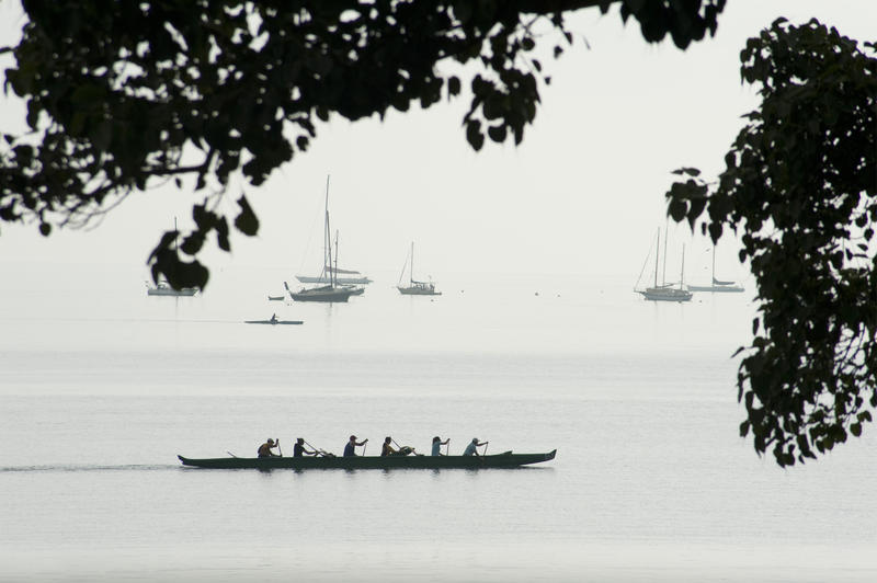 Silhouette Profile of Six Person Canoeing Team Paddling in Long Canoe Along Shoreline of Lake with Sailboats in Background