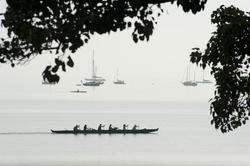 10982   Six Person Canoeing Team Paddling Along Lakeshore