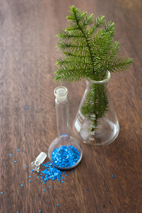 Festive laboratory glassware for Christmas with blue glitter in a stoppered flask and a fresh green pine branch in a beaker standing on a wooden counter, high angle view