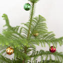 8655   Decorated natural pine Christmas tree