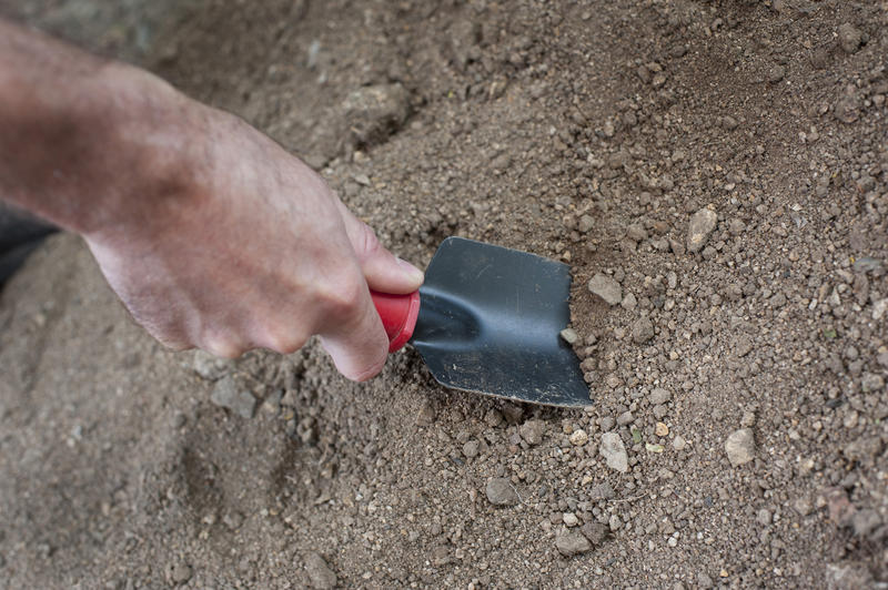 Close up of the hand of a man digging in the garden with a trowel in new soil ready to transplant seedlings or plants