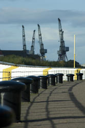 10789   Large industrial cranes in a dockyard