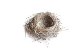 7903   Empty birds nest