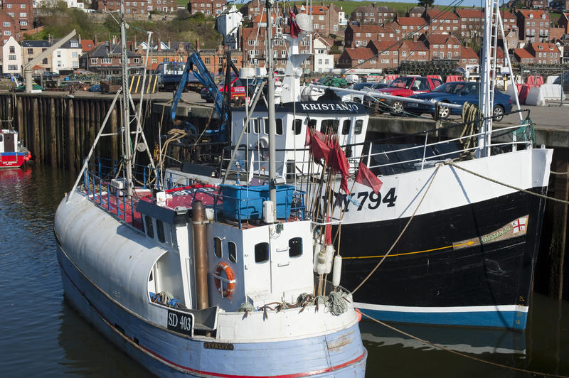 Fishing boats and trawlers moored in Whitby upper harbour, part of the fishing fleet operating from this active fishing town on the Yorkshire coast