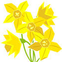 9100   flowers daffodils
