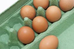10611   Fresh Brown Eggs on a Green Cardboard Tray