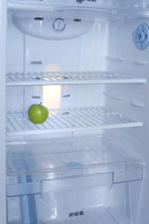 8219   Interior of a fridge with a green apple