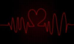 9298   heartbeat