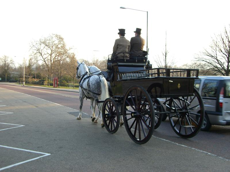 Horse and buggy in hyde park, london