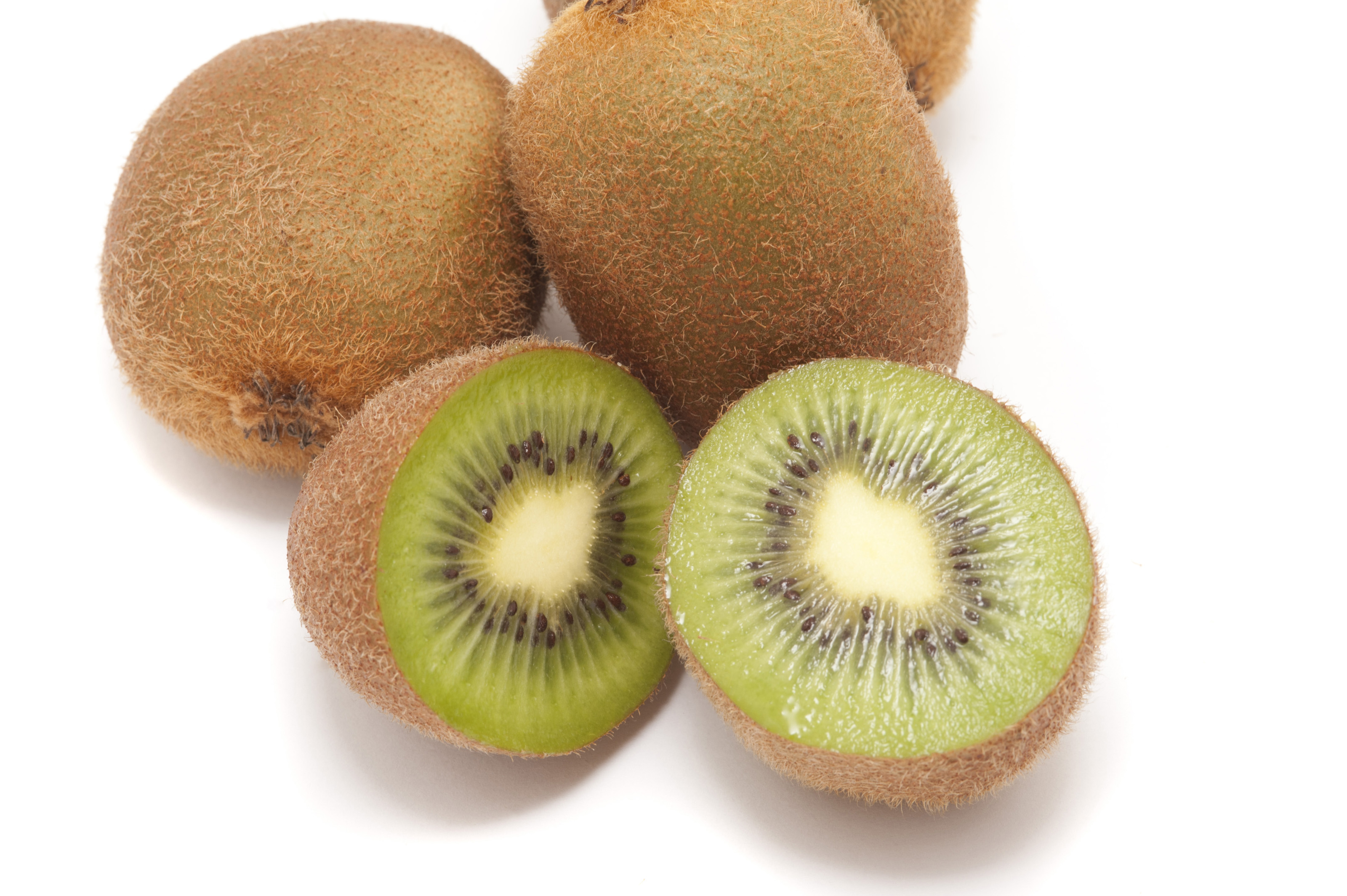 Kiwi Is Good For Dogs