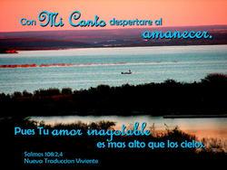 11767   Mi Canto en la Manana