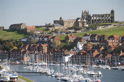 7853   Whitby upper harbour and abbey ruins