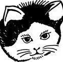 8967   portrait of a cat