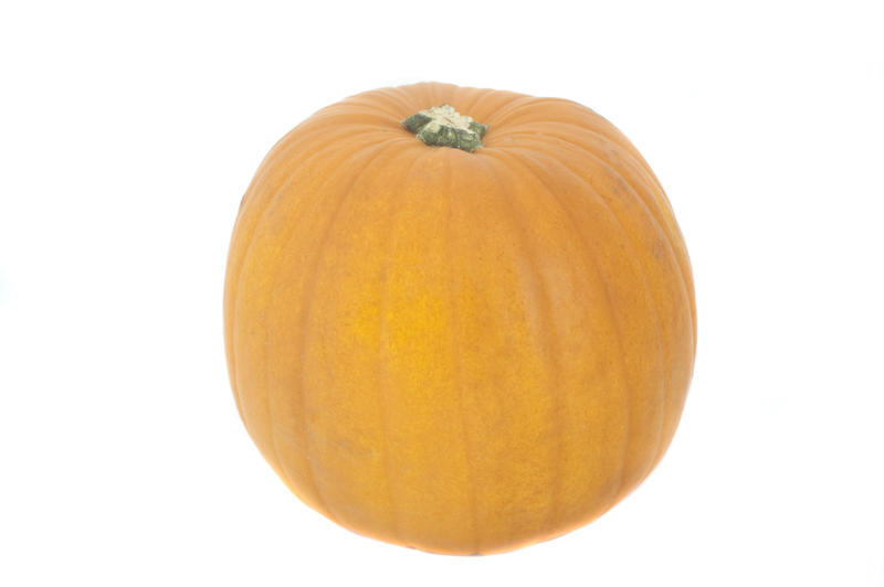 Whole fresh pumpkin, an autumn squash of the cucurbita family, isolated on white