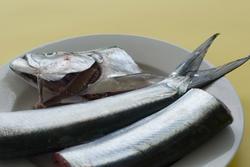 8512   Preparing fresh fish