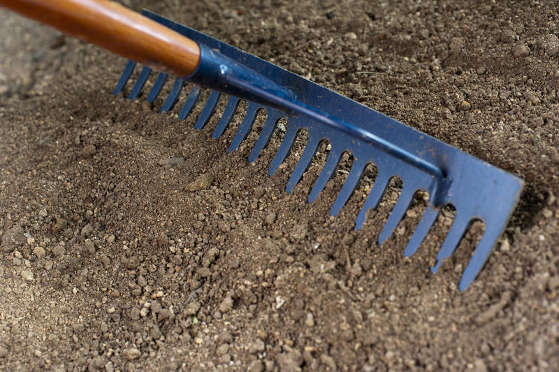 Raking the soil in a flowerbed in a garden with a fine toothed metal rake to prepare and level it for planting seeds and seedlings