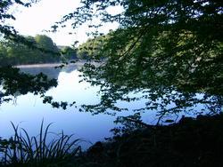 8537   still lake