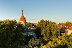 11070   tallinn in late noon