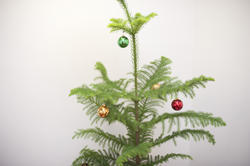 8632   Christmas tree with colourful baubles