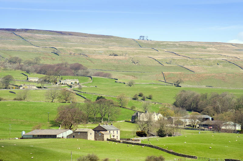 Picturesque view of typical stone farm buildings near Wensleydale, Yorkshire Dales set in the rolling green hills of the area