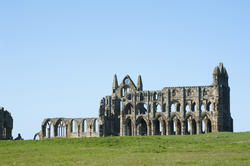 7925   Whitby Abbey, England