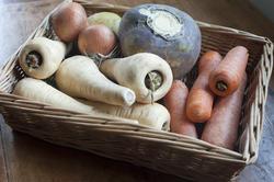 8451   Fresh root vegetables in a basket
