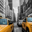 10390   yellow cabs in new york