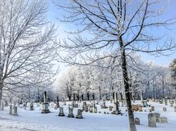 12073   a cold winter