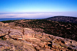 16111   Acadia National Park Cadillac Mountain View