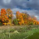 13049   autumn vermont