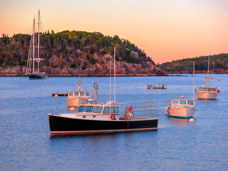 <p>Boats in the harbor late afternoon, Bar Harbor Maine.</p>