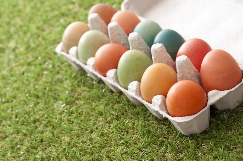 Dozen of colorful dyed Easter eggs in open carton box over green loan cut grass with copy space